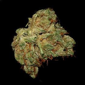 Legalized OG
