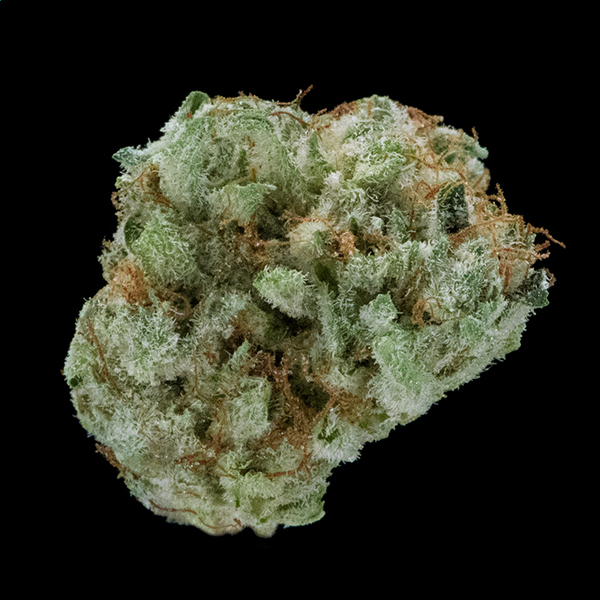 Washington bud co blackberry kush new