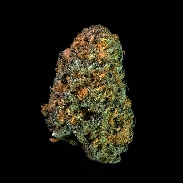 Emerald mountain blackberry og