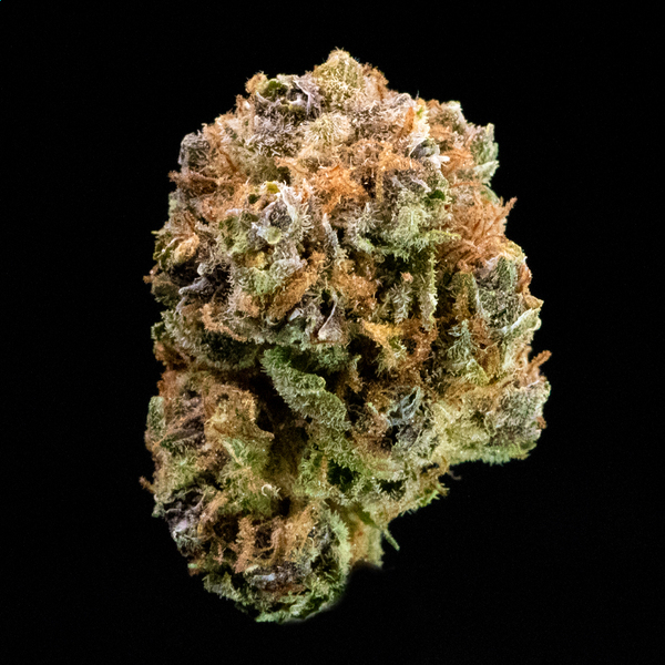 Trichome blueberry muffin