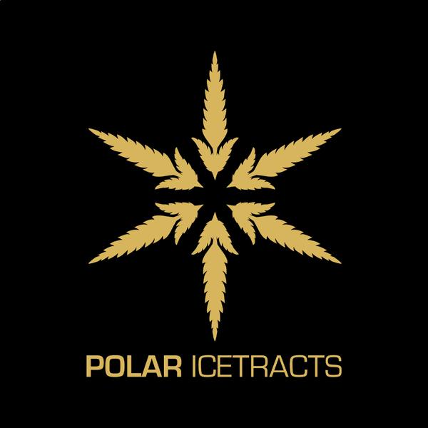 Polar icetracts