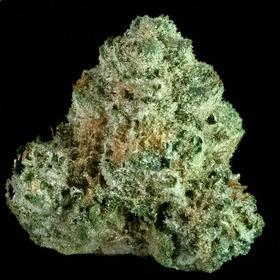 Chem Fuego #7