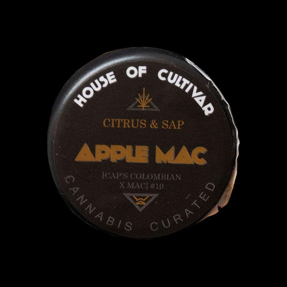 Hoc apple mac